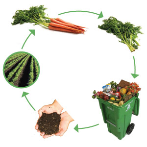 compost_cycle